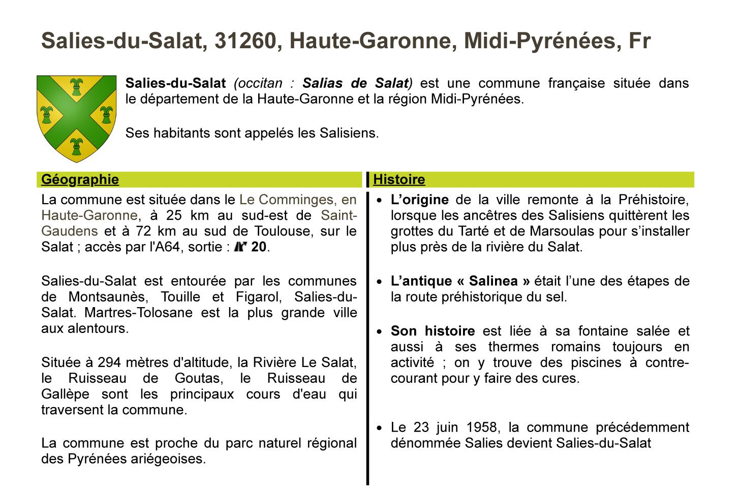 Fiche-Salies-du-Salat,31260,Haute-Garonne,Midi-Pyrénées,Fr