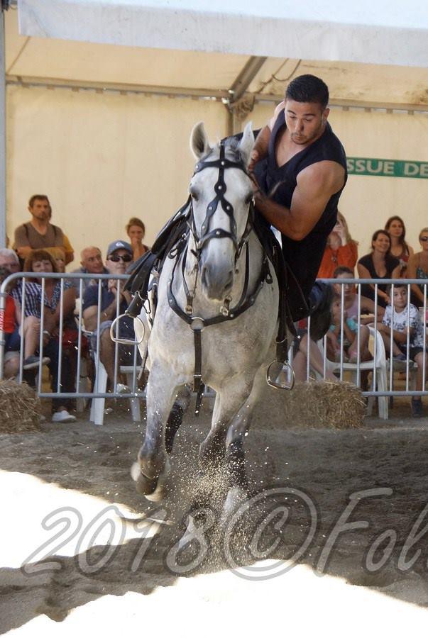 Spectacle-Equestre+Jordan_Lebon©2018FCpcpc (9)
